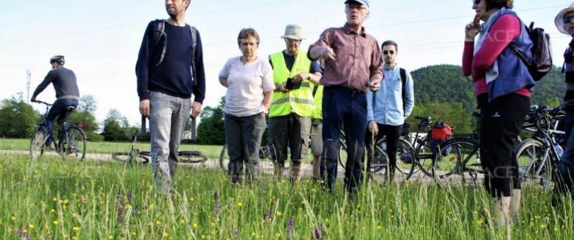Trajets explore le futur contournement de Châtenois